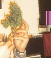 Atami Bloombastic Nah Nah Naaaaahhhhh Kind Of A