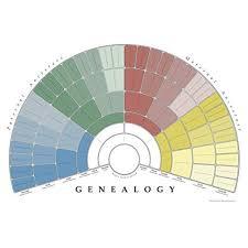 Family Tree Charts To Fill In Family Tree Charts To Fill In Amazon Com
