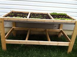 build a salad table to grow your greens