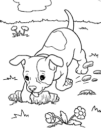 Foro Coloring Pages