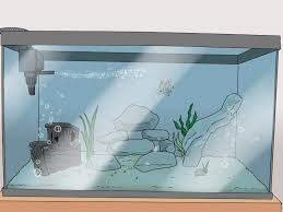Fish Tank Maintenance Chart How To Set Up A Healthy Goldfish Aquarium 15 Steps