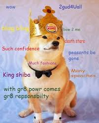 doge twinkie follow your dreams. Simple Twinkie Royal Shibe Funny Animal Quotes Funnies Pictures  Animals Throughout Doge Twinkie Follow Your Dreams