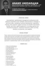 Ceo Resume Template Custom Ceo Resume Samples VisualCV Resume Samples Database