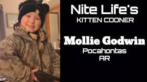 Kitten Cooner Mollie Godwin - YouTube