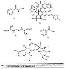 essay on tuberculosis tb chemical structures of the first line antiberculosis drugs