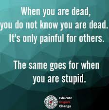Being Stupid Is Like When You Are Dead You Do Not Know You Are Dead Custom Stupid Quotes