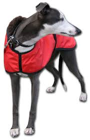 red deluxe whippet coat with brown fleece and reflective strips