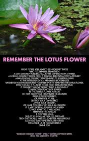 Pin By Tara Lea Preston On Well Said Lotus Quote Flower Poem