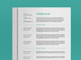 Template For A Resume 20 Best Resume Template Psd Free Download Graphicslot