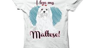 I love my Maltese <b>T</b>-<b>Shirts</b>, Hoodies. ADD TO CART ==   https://www ...