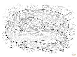 Sea Serpent Coloring Pages 26 18 Monster Meinlhjcom