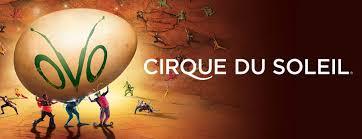 Cirque Du Soleil Ovo Nycb Live