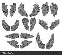 Vektorové Sada Různých Anděl Nebo Ptačí Křídla S šedé Peří A černá