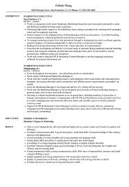 Marketing Executive Resume Samples Velvet Jobs