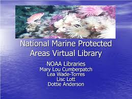 PPT - National Marine Protected Areas Virtual Library PowerPoint  Presentation - ID:4196812
