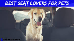 5 best seat covers for dog hair reviews 2018