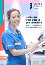 Professionalism In Nursing The Code Professional Standards Of Practice And Behaviour For