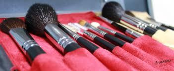 makeup brush set in velvet case