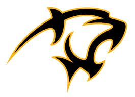 Athletic Logos | Brand Identity | Adelphi University