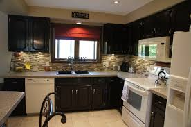 Dark Brown Kitchen Cabinets With White Appliances Trekkerboy Paint