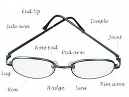 Image result for spectacles bridge