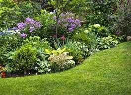 drought resistant garden. Beautiful Drought Beautiful Drought Tolerant Garden  40 Plant Ideas For  Your Homesteadu0027s Landscape On Resistant N