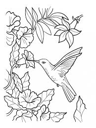 Small Picture 20 Free Printable Bird Coloring Pages EverFreeColoringcom