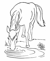 Small Picture Wild Horse Coloring Pages Horse coloring page Lead a horse to