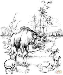 Small Picture Moose and Wolves in Isle Royale National Park coloring page Free