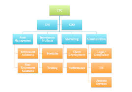 Cfo Organizational Chart Ceo Coo Cfo Organizational Chart Bedowntowndaytona Com