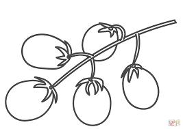 Tomaten Aan Stok Kleurplaat Gratis Kleurplaten Printen
