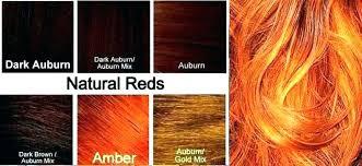 Orange Hair Colour Chart Light Brown Hair Color Chart