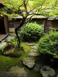 Japanese Garden Structures Japanese Black Pine On My List Of Must Have Plants To Add To The