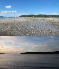 Tide Chart Bar Harbor Maine Low Tide And High Tide Picture Of Land Bridge To Bar
