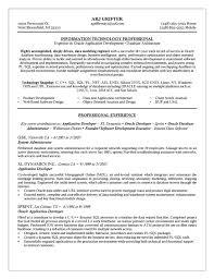 Network Administrator Resume Sample Elegant It Cv Template Cv ...