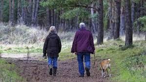 Resultado de imagen para Cualquier ejercicio es mejor que no hacer nada para la salud cardiovascular de los mayores