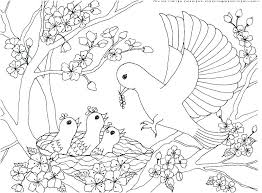 Bird Coloring Pages Free Printable Bird Coloring Pages Flying Bird