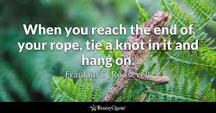 Fdr Quotes Gorgeous Franklin D Roosevelt Quotes BrainyQuote