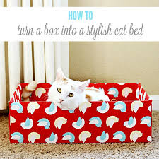 turn an ordinary cardboard box into a stylish diy cat bed mycatmymuse ad