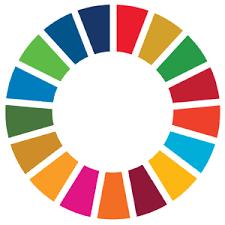 """Résultat de recherche d'images pour """"global goals"""""""