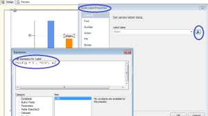 Ssrs Chart Data Label Expression How To Toggle Data Labels On Ssrs 2008 Charts Bimssql
