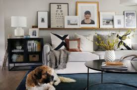 crate and barrel living room ideas. A Dog Sitting On Blue Living Room Rug In Front Of White Fabric Sofa And Next Crate Barrel Ideas R