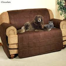 sofa covers for leather sofas dogs and leather couches ultimate suede pet furniture sofa cover small