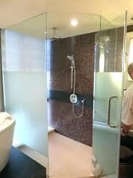 shower heads super shower head banyan tree soft reviews waterpik saver super shower head