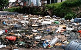 Resultado de imagem para falta de saneamento basico