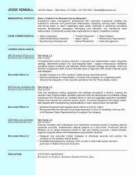 Free Executive Resume Templates Executive Resume Template Word New Devops Resumes Robertottni Free