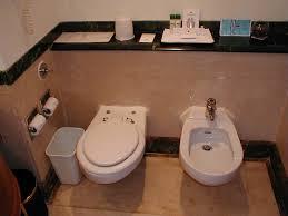 bathroom designs great indian idea your