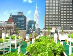 8 gorgeous urban rooftop gardens