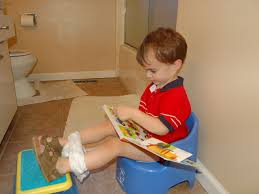 the best tricks that makes potty training easy potty pads training