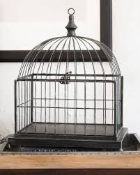 Decorative Bird Cage by Balsam Hill